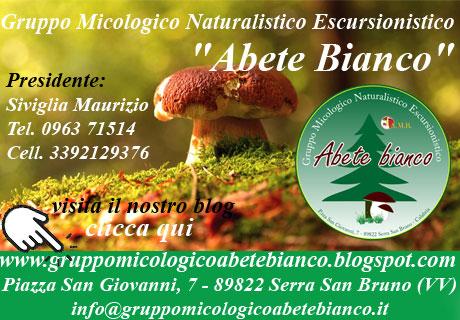 Gruppo Micologico Naturalistico Escursionistico