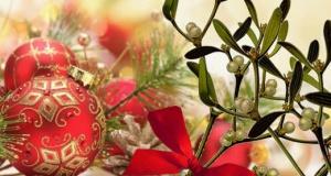 Il vischio  che adorna il presepe e gli addobbi natalizi.
